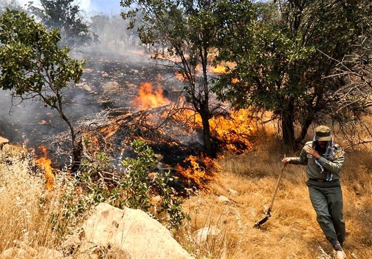 دوباره آتش به جان جنگلهای دنا افتاد