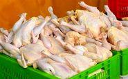 مرغ گران نخرید/ عرضه مرغ تنظیم بازاری به اندازه کافی
