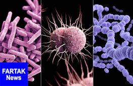روشی برای تشخیص سریع و دقیق عفونت