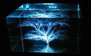 لحظه جالب به دام افتادن الکتریسیته در شیشه + فیلم