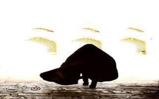تصاویر دیدنی از ضیافت همدلی و محبت در مقبره علامه مجلسی