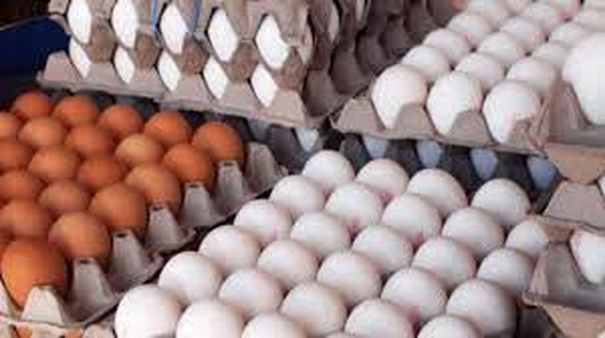 باز هم منتظر افزایش قیمت تخم مرغ باشیم؟
