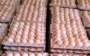 تخم مرغ ارزان شد/ ستاد تنظیم بازار: شانه ای گران تر از ۲۰ هزار تومان نخرید