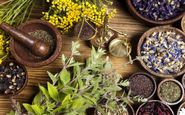 گیاهانی دارویی برای تقویت سیستم ایمنی بدن