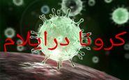 افزایش تعداد مبتلایان به بیماری کرونا در استان به ۲۴۶ مورد