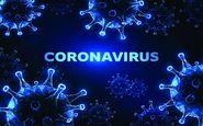 جمعه 4 مهر| تازه ترین آمارها از همه گیری ویروس کرونا در جهان