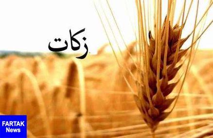 مردم فارس 233 میلیارد ریال زکات پرداخت کردند
