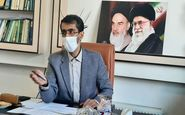 غرس ۱۰ هزار اصله نهال مثمر در کرمانشاه/ امسال نهال کاری به صورت هدفمند انجام خواهد شد