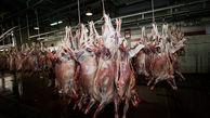 قاچاق 2 میلیاردی گوشت قرمز در میامی