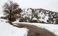 نخستین برف پاییزه ارتفاعات خوزستان را سفیدپوش کرد