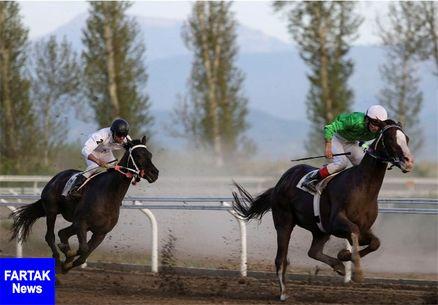 هفته یازدهم مسابقات اسبدوانی کورس پائیزه در گنبدکاووس برگزار شد