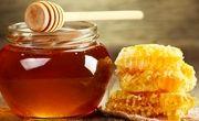 27 درصد عسل کشور در آذربایجانغربی تولید میشود
