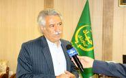 پیش بینی تولید  ۲ هزارو ۳۲۰  تن کلزا در شهرستان کرمانشاه