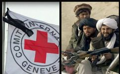 سازمان صلیب سرخ با طالبان مذاکره میکند