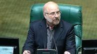 رئیس مجلس: اقتصاد مردمی را به عنوان مهمترین موضوع در دستور کار داریم