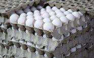 قیمت تخم مرغ در بازار (۹۹/۱۲/۸)