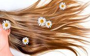 راهکارهایی برای جلوگیری از آسیب رسیدن به مو