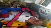 حمله خرس به کوهنورد ایلامی/ فرد مصدوم به مرکز درمانی در ایلام انتقال یافت