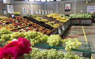 نخستین روز پاییز و قیمت میوه در میادین تهران