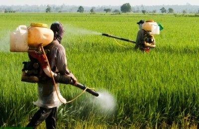 شرکت خارجی در هشتمین همایش سالیانه نهاده های کشاورزی حضور دارند